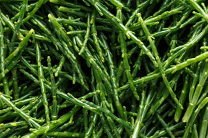 Samphire Grass (100gm)