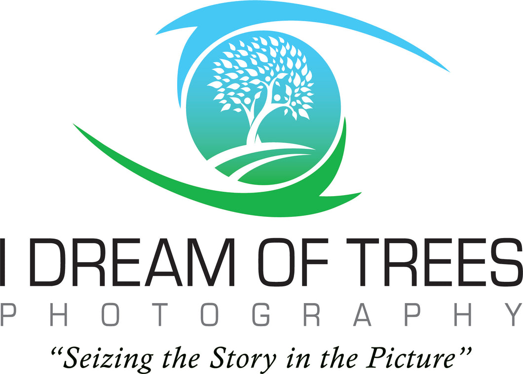 I Dream Of Trees - Gift Certificate (Link)