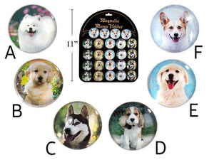 Dog Portrait Round Glass Magnet - Dollar Max Depot