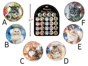 Cat Portrait Round Glass Magnet - Dollar Max Depot