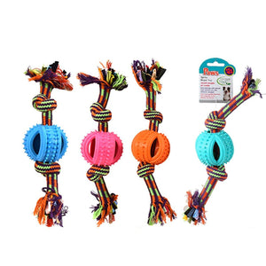 Paws Spiny Rope Toy