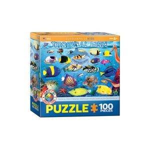 Eurographics Tropical Fish 100-Piece Puzzle Box