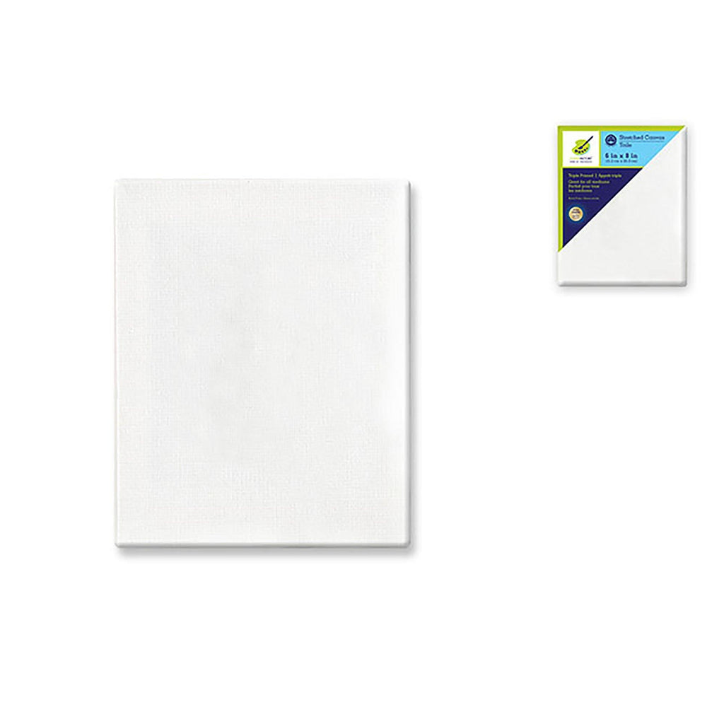 "Stretch Artist Canvas: Rect. 6""X8"" Primed Back-Stapled Painting Canvas - Dollar Max Depot"