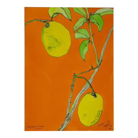 ORIGINAL WATERCOLOUR OF ORANGE AND LEMONS - ANDREW LOGAN 1993