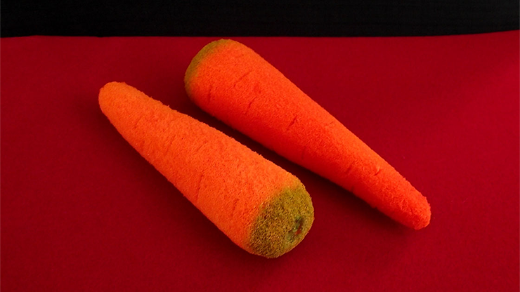 Sponge Carrots (2 pieces) by Alexander May