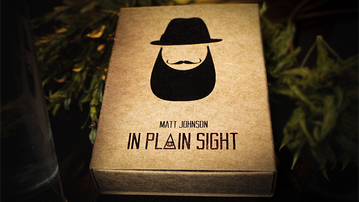 In Plain Sight by Matt Johnson
