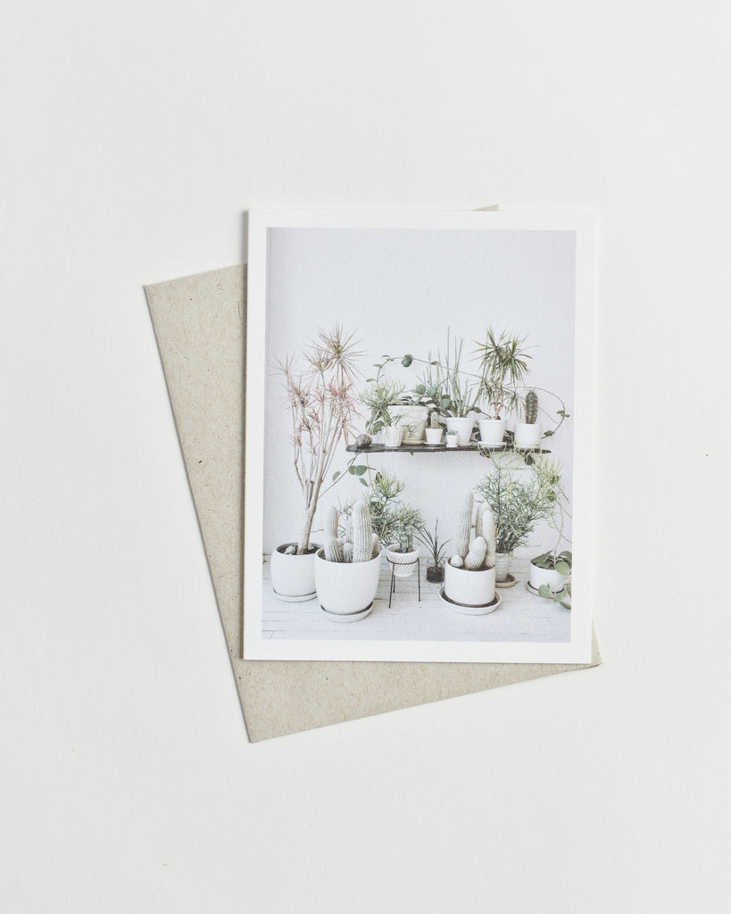 Photo greeting card of assorted potted plants and cacti against a white wall.