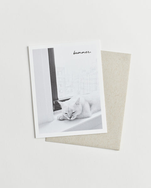 "Greeting card with a black and white photo of a cat sleeping on a window sill and ""bummer"" in cursive."