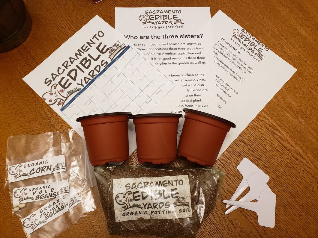 3 Sisters, Organic Garden Kit for Children