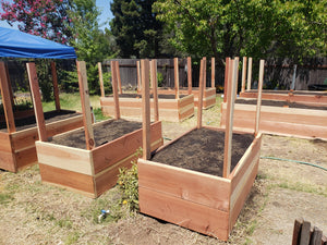 Double high Raised Beds