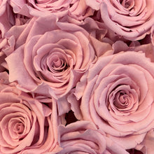 Load image into Gallery viewer, Ballerina Pink infinity rose colour | Bling Blooms