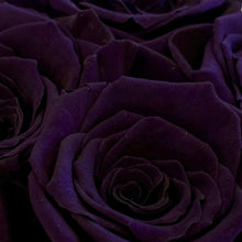 Load image into Gallery viewer, Cadbury Purple infinity rose colour | Bling Blooms