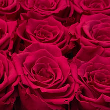 Load image into Gallery viewer, Hot Diva Pink infinity rose colour | Bling Blooms