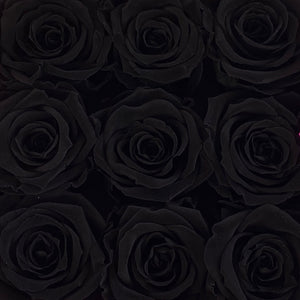 Jet Set Black infinity rose colour | Bling Blooms