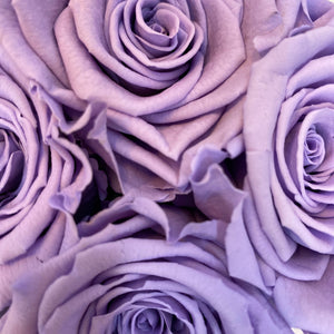 Lilac Lush infinity rose colour | Bling Blooms
