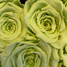 Load image into Gallery viewer, Mint Green infinity rose colour | Bling Blooms
