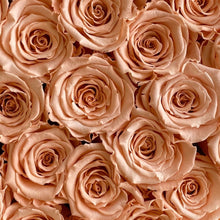 Load image into Gallery viewer, Perfect Peach infinity rose colour | Bling Blooms