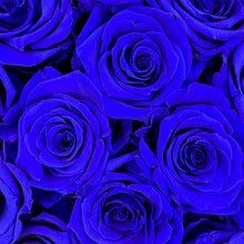 Load image into Gallery viewer, Sapphire Blue infinity rose colour | Bling Blooms