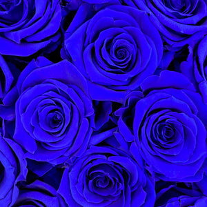 Sapphire Blue infinity rose colour | Bling Blooms