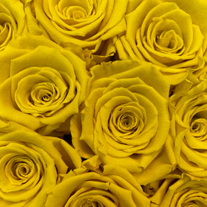 Sunshine Yellow infinity rose colour | Bling Blooms