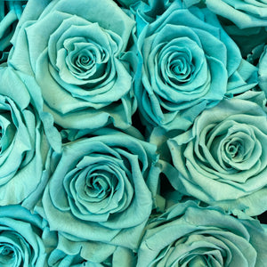 Tiffany Blue infinity rose colour | Bling Blooms