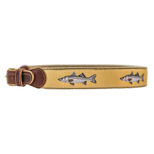 Snook Belt