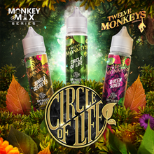 Load image into Gallery viewer, 12 monkey circle of life 60ml