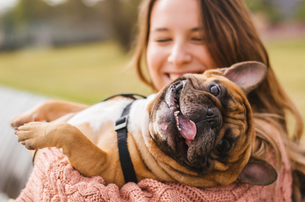 Happy Pet Owner With Dog