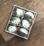 "5.25"" Box of Speckled Eggs"