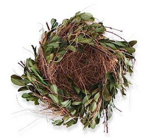 "5.5"" Boxwood and Grass Nest"