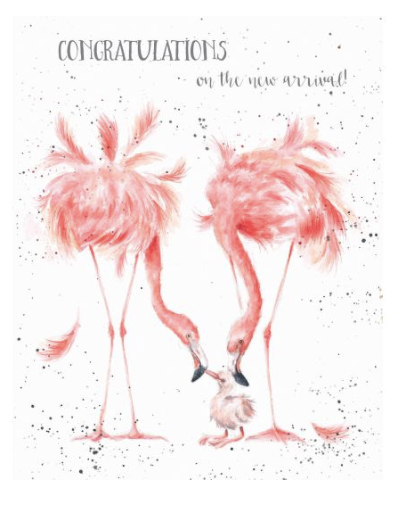 A New Arrival Flamingo Card