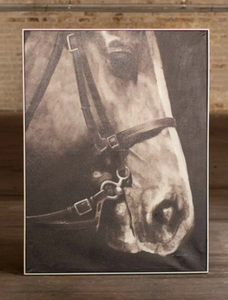 Black and White Side View Horse Oil