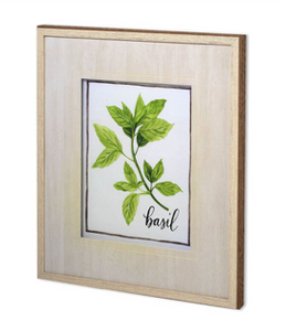 Watercolor Herb Collection