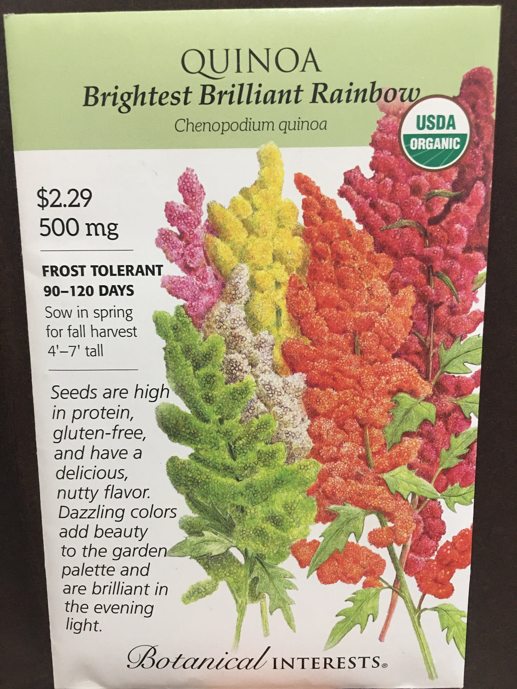 Seed Packet Quinoa Brightest Brilliant Rainbow