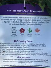 Load image into Gallery viewer, Crape Myrtle Princess Holly Ann #3