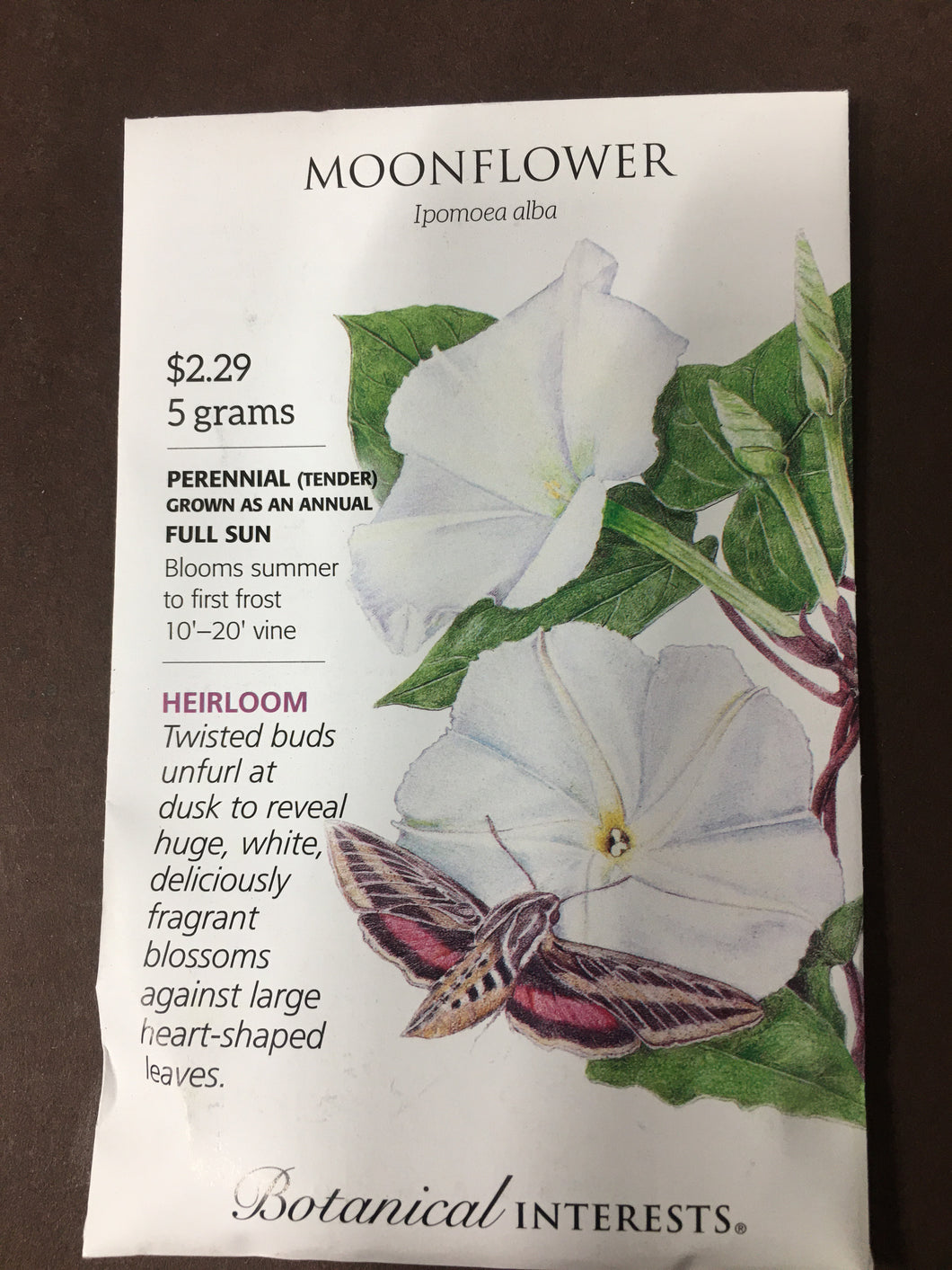 Seed Packet Moonflower