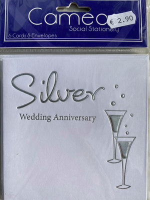 Silver Anniversary Invitations (6ct)