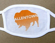 Load image into Gallery viewer, Allentown on orange Buffalo/Bison face mask face cover