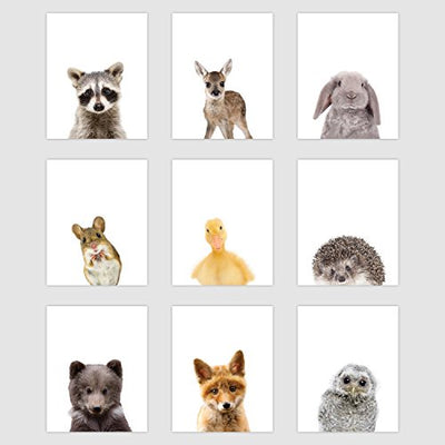 "Set of 9 Woodland Animal Poster Prints - Cute Baby Forest Animal Wall Art - Nursery Room Decor (8"" x 10"", Unframed Paper Cardstock) Double Sided"