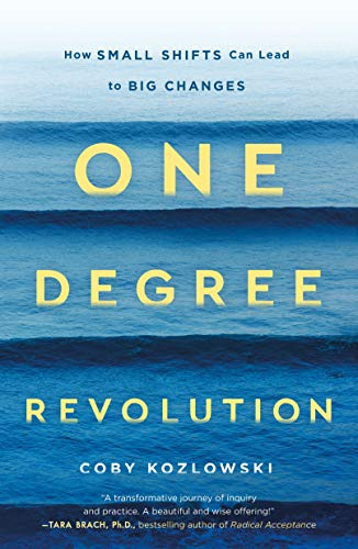 One Degree Revolution: How Small Shifts Lead to Big Changes