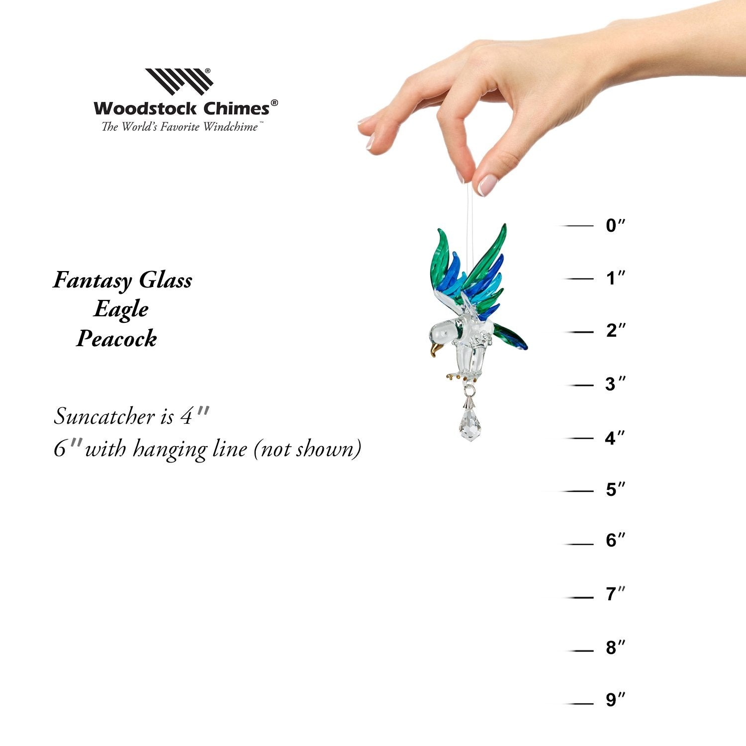 Fantasy Glass Suncatcher - Eagle, Peacock proportion image
