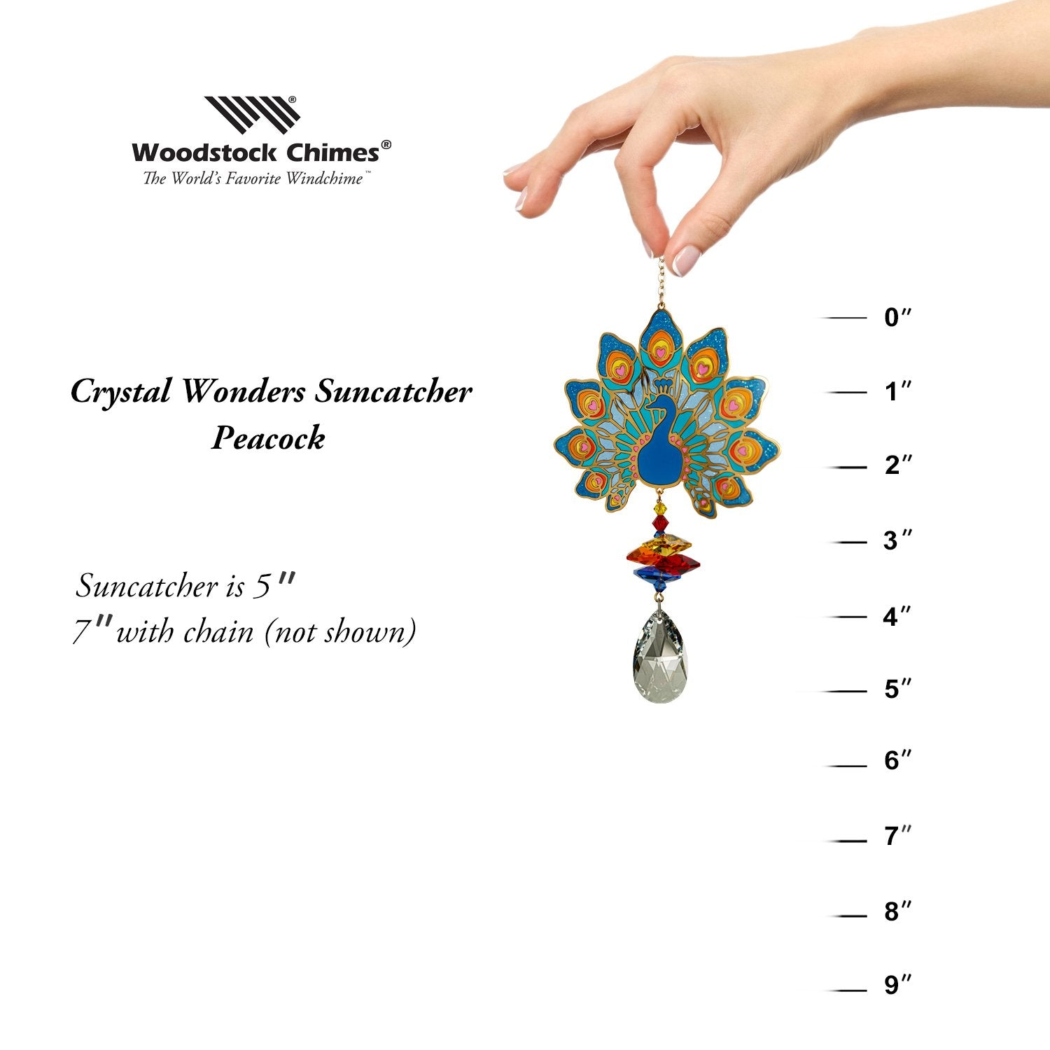 Crystal Wonders - Peacock proportion image