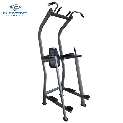Element Fitness Vertical Knee Raise Tower