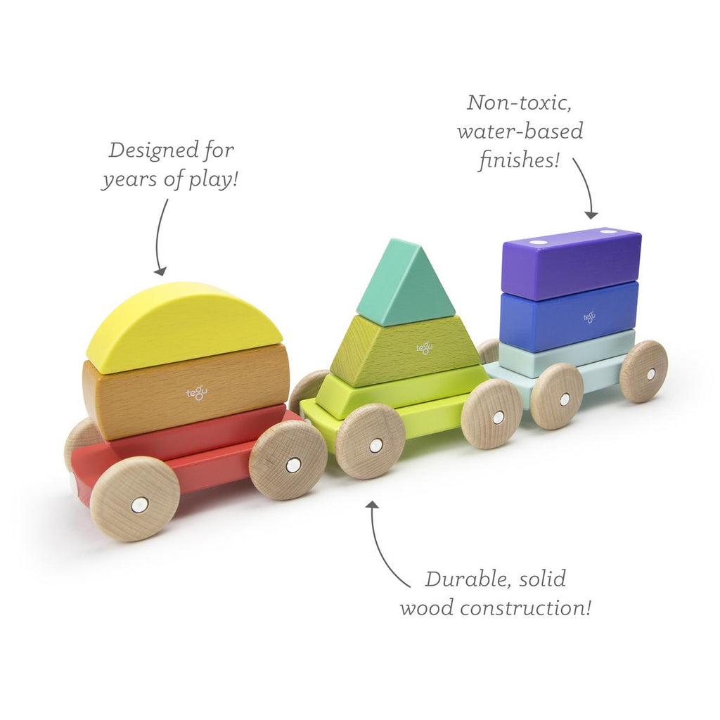 Tegu Shape Train 9pc