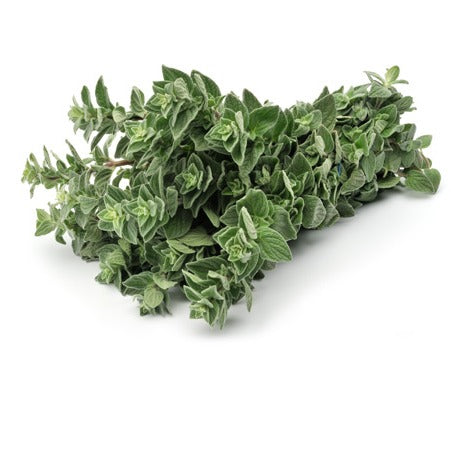 Herb: Oregano x50g