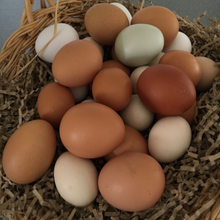 Load image into Gallery viewer, Eggs: Medium Free Range x 6
