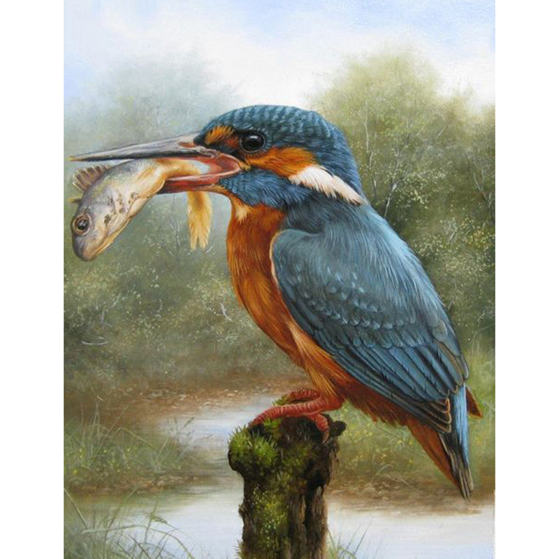 Kingfisher & Fish Cross Stitch