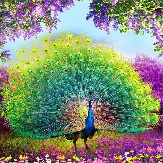 Diamond Painting Peacock