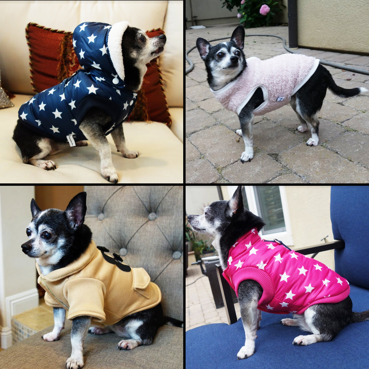 Warm Puff Dog Coat - primewareinc