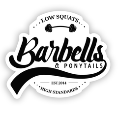 Low Squats// High Standards Decal